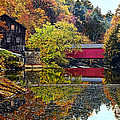 Mcconnell's Mill And Covered Bridge by Marcia Colelli