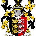 Mcconsidine Coat Of Arms Irish by Heraldry