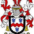 Mccormick Coat Of Arms Irish by Heraldry