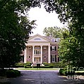 Mccormick Mansion From The Drive by Laurie Eve Loftin