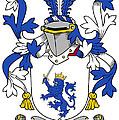 Mccrery Coat Of Arms Irish by Heraldry