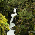 Mcdonald Creek Cateracts by Jeff Swan