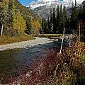 Mcdonald Creek by Cindy Murphy - NightVisions
