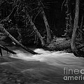Mcdonald River   #1983 by J L Woody Wooden