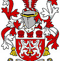 Mcfinucane Coat Of Arms Irish by Heraldry