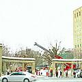 Mcgill Campus Student Cycles By Roddick Gates Sherbrooke St Montreal Winter Scene Carole Spandau  by Carole Spandau