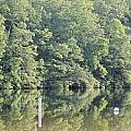 Mckamey Lake Calm Reflections by Robin Vargo