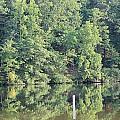 Mckamey Lake Serenity by Robin Vargo