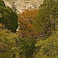 Mckittrick Canyon Trail by Bob Phillips