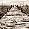Mcteer Dock - Sepia by Scott Hansen