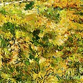 Meadow After Van Gogh by Dragica  Micki Fortuna