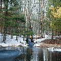 Meadow Brook Pond 1 by Steven Natanson