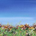 Meadow by Natasha Denger