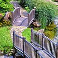 Meandering Pathway by Christi Kraft
