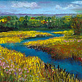 Meandering Stream by David Patterson