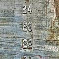 Measure Of Draft by Michael Allen