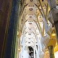 Medallion Arches Of Sagrada Familia by Lorraine Devon Wilke