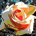 Medallion Rose by Alys Caviness-Gober