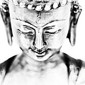 Medicine Buddha Monochrome by Tim Gainey