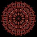 Medicine Wheel Dragonspur K12-5 by Doug Morgan