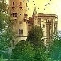 Medieval Castle - Old World  by Carol Groenen