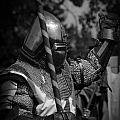 Medieval Faire Knight's Victory 1 by Vivian Christopher