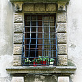 Medieval Window With Iron Grilles by Jaroslav Frank