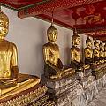 Meditating Buddhas by Lee Jorgensen
