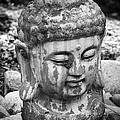 Meditation Bw by Teresa Mucha