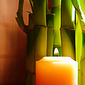 Meditation Candle And Bamboo by Olivier Le Queinec