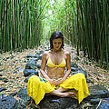 Meditation In Bamboo Forest by M Swiet Productions