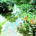 Meditation Pond by Florene Welebny