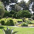 Mediterranean Garden - Cote D Azur by Christiane Schulze Art And Photography