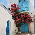 Mediterranean House by Eszter Kovacs
