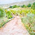 Medjugorje Path To Apparition Hill by Vicki  Housel