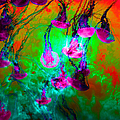 Medusas On Fire 5d24939 Square P128 by Wingsdomain Art and Photography