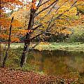 Meduxnekeag River 1 by Gene Cyr