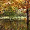 Meduxnekeag River 2 by Gene Cyr