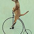 Meerkat On A Black Penny Farthing by Kelly McLaughlan
