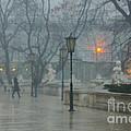 Meeting  In The Rain by Carol Weitz