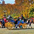 Meeting Of The Carriages by Allen Beatty