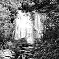 Meigs Falls Smoky Mountains Bw by Cynthia Woods