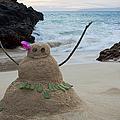 Mele Kalikimaka Merry Christmas From Paako Beach Maui Hawaii by Sharon Mau