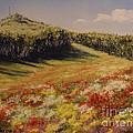 Melkow Trail  by Stanza Widen