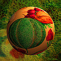 Melon Ball  by Robin Moline