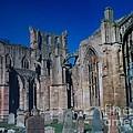Melrose Abbey  Scotland by Tim Townsend