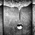 Melt by Bob Orsillo