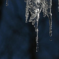 Melting Icicle Formation The Joker by Donna Haggerty