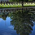 Memorial Reflecting Pool by Diana Powell