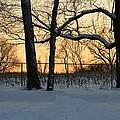 Memories Of Winter by Sonali Gangane